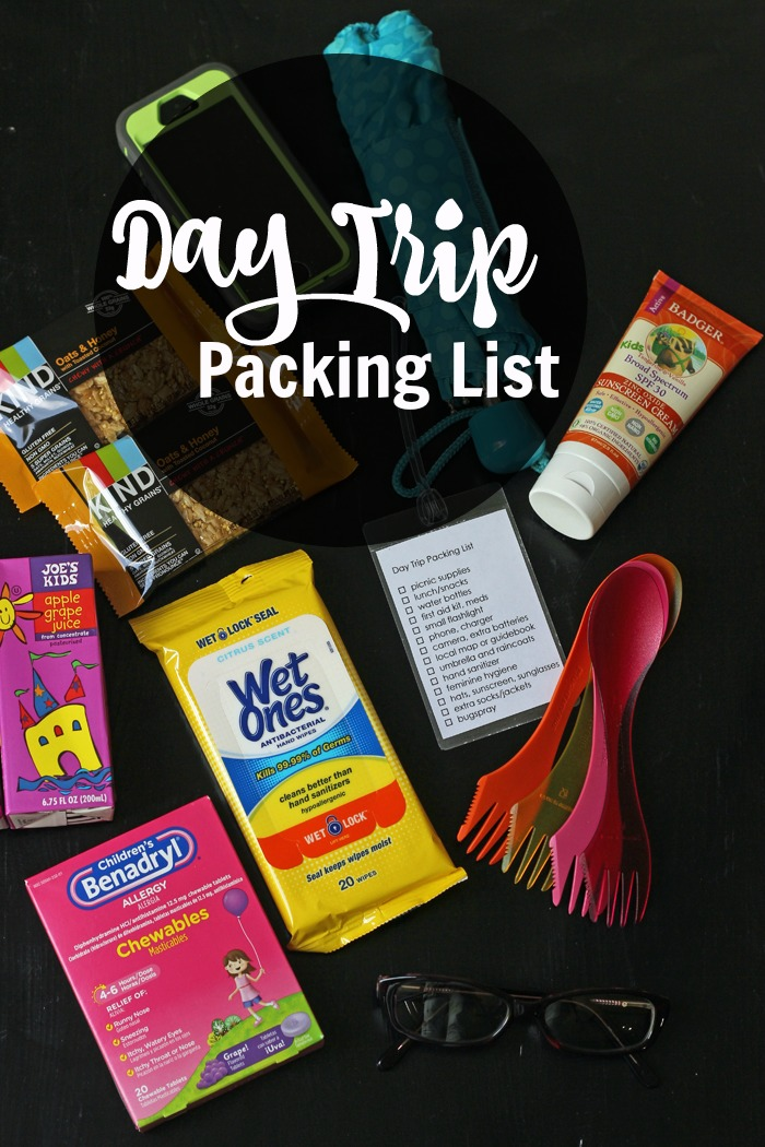 Be Prepared with a Day Trip Checklist | Life as Mom