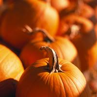 Streusel-Topped Pumpkin Pie – Recipe Swap: (Never) Too Many Pumpkins!