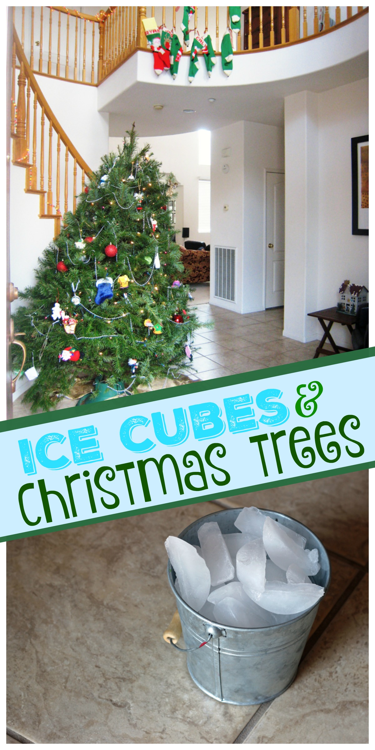 Feed Your Christmas Tree with Ice Cubes | Life as Mom - Let your toddler be the keeper of the tree this year. Feed your live Christmas trees with ice cubes!