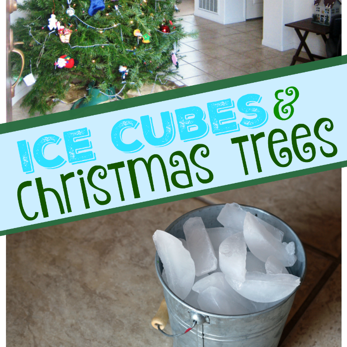 Ice Cubes and Christmas Trees – They Work For Me!