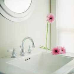 ca. 2002 --- Flowers at Bathroom Sink --- Image by © Royalty-Free/Corbis