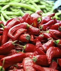 Chicken Enchilada Casserole (URS: Hot and Spicy)