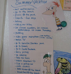 42 Days of Summer Vacation