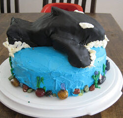A Whale of A Cake