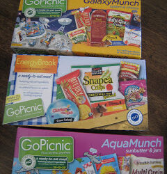 Christmas Giveaway: Go Picnic Boxed Lunches