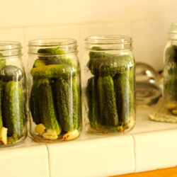 pickles and garlic in jars ready to be canned