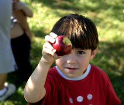 Fall Traditions: How 'Bout Them Apples?