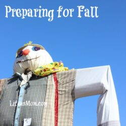Preparing for Fall