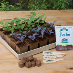 Seed-starting Greenhouse Giveaway from Burpee