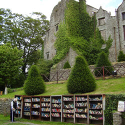 Nufkin books and castle