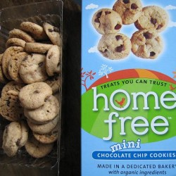 Giveaway! Homefree Cookies: Allergy Free and Still Tasty!