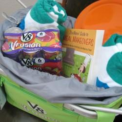 Giveaway! V-8 Fusion Beach Picnic Basket