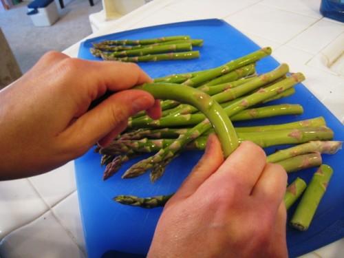 breaking asparagus pieces