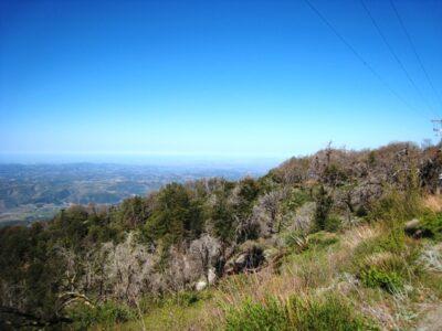 CA Hiking