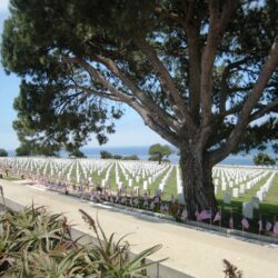 Memorial Day is More Than Just a Picnic