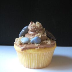 Graduation Cupcakes: Ain't No Mountain High Enough
