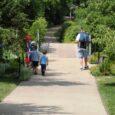 walking at the arboretum
