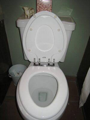 Toilet Seat 2