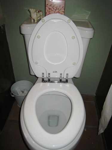 One Clever Potty Seat
