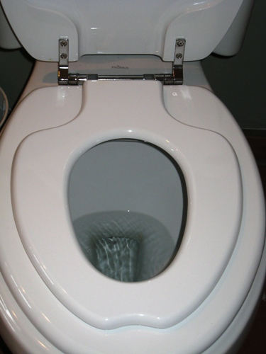 Toilet Seat Insert For Potty Training