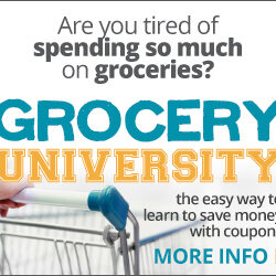 A Review of Grocery University