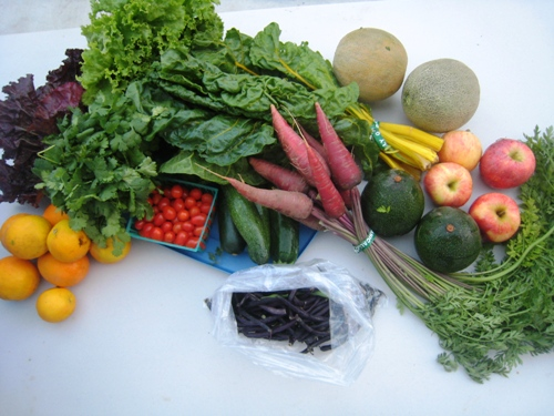 Grocery Geek Presents: Trying Out a CSA