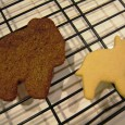 Gingerbread v Sugar Cookie