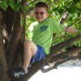 Davis in tree
