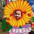 Spring Flower Boy