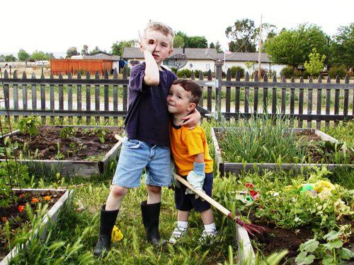 Boys standing in a garden