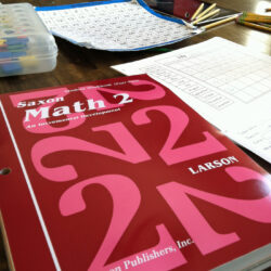 Getting Started in Homeschooling: Deciding to Go for It