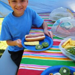 3 Things You Need for a Great Family Picnic