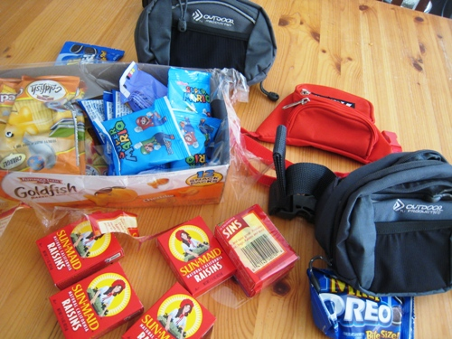 Image result for bring snacks to disney world