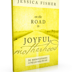 on-the-road-to-joyful-motherhood-SPINE