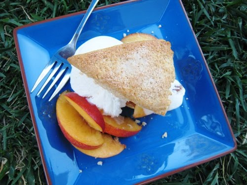 Peach Shortcake 2