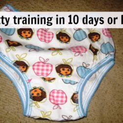 Potty Training in 10 Days or Less