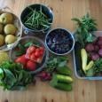 Week 3 produce