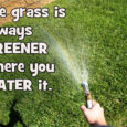 greener grass with text