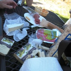vacation picnic