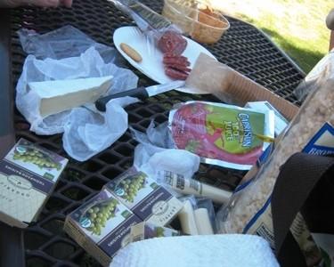 vacation picnic