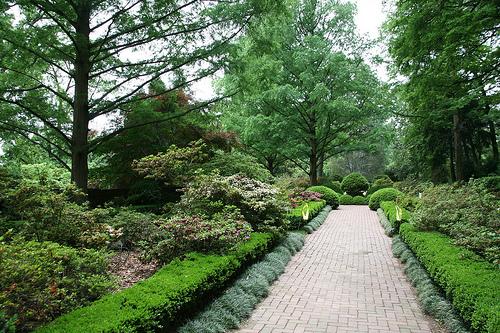 The Most Beautiful Garden (The Gr is Always Greener)