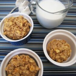 apple oat cakes