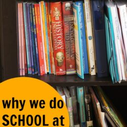 Why We Do School at Home | Life as Mom