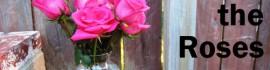 31 days roses