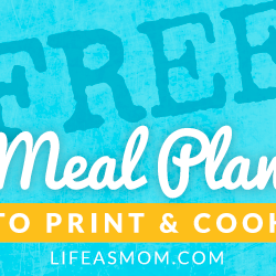 Weekly Meal Plan to Print & Cook #28