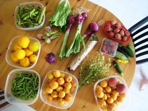 Spring vegetables produce box