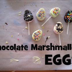 diy on a dime chocolate marshmallow eggs