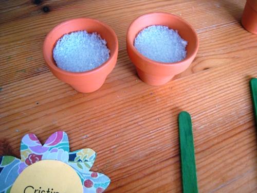 empty flower pots