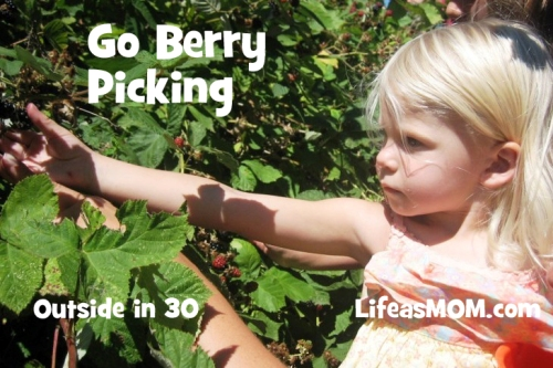 go berry picking