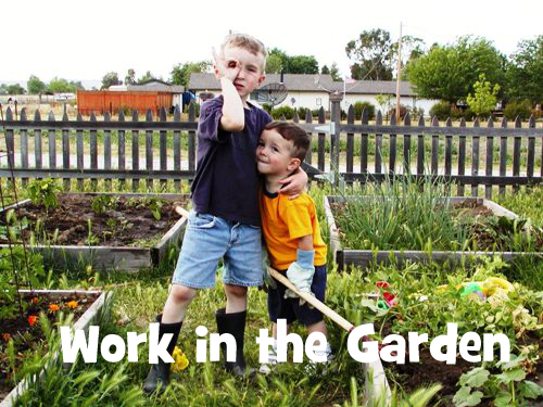 work in the garden